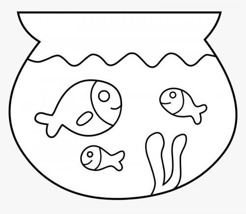 pesciolini nell'acquario belli