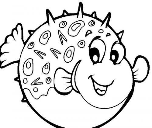 pesce palla che sorride