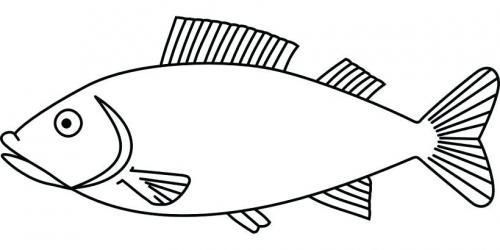 pesciolino nel mare