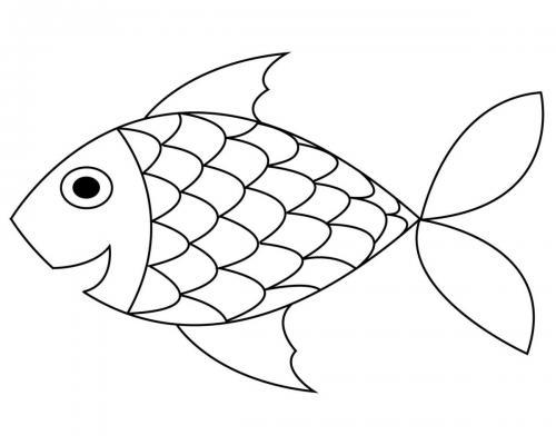 pesce del mare simpatico