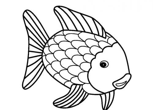 pesce che guarda in basso