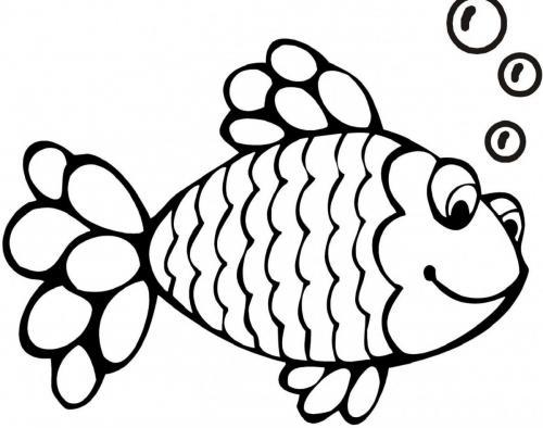 pesce tropicale che fa le bolle