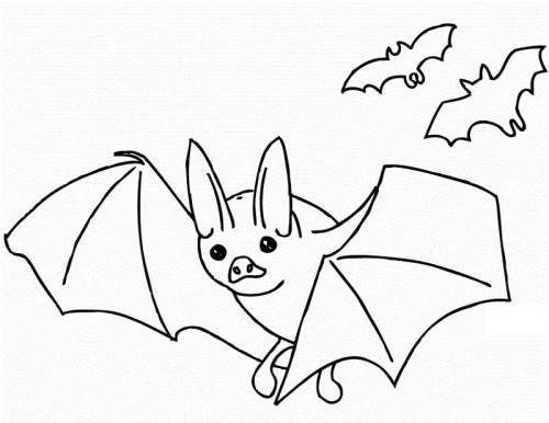 tre pipistrelli di Halloween