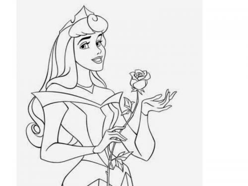 Aurora e una rosa