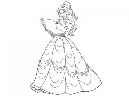Belle e il libro