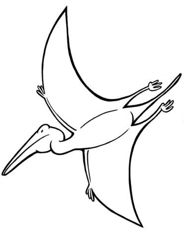 pterodattilo disegno
