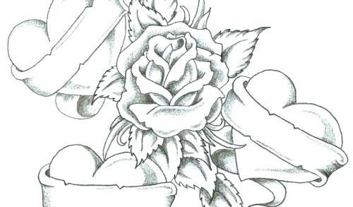 rosa tra i cuori