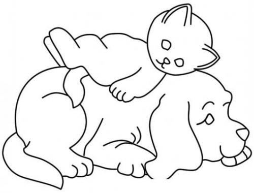 sagoma cane e gatto