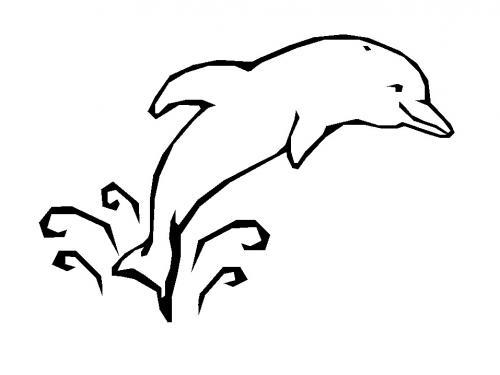 sagoma delfino