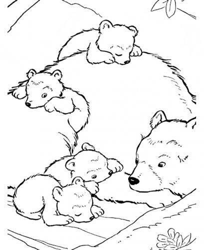 sagoma orsetto da ritagliare