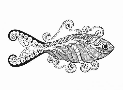 pesce femmina stilizzato