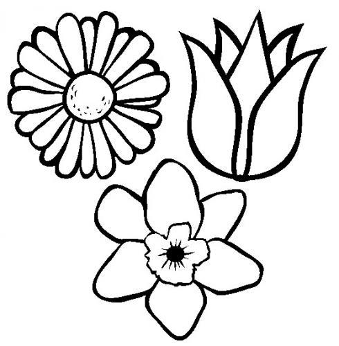 sagome fiori da colorare