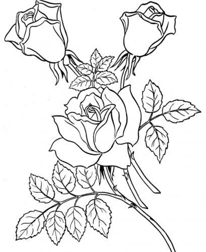 sagome fiori