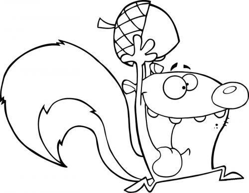 scoiattoli disegni da colorare