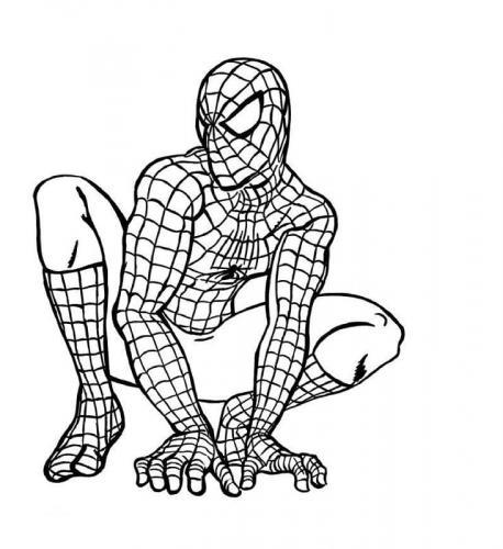spiderman da colorare