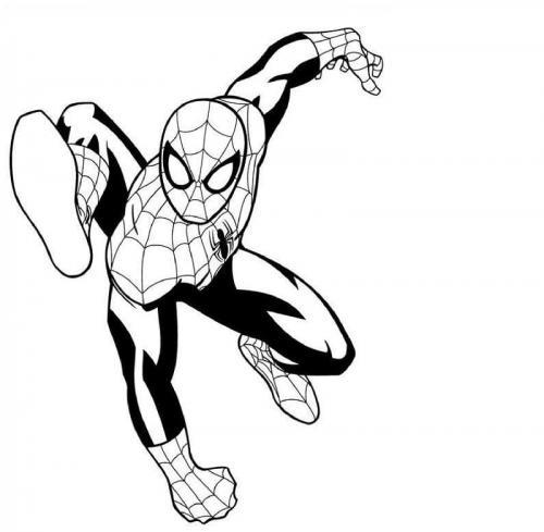 spiderman nero da colorare