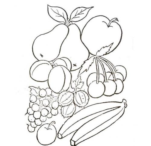 frutta da colora
