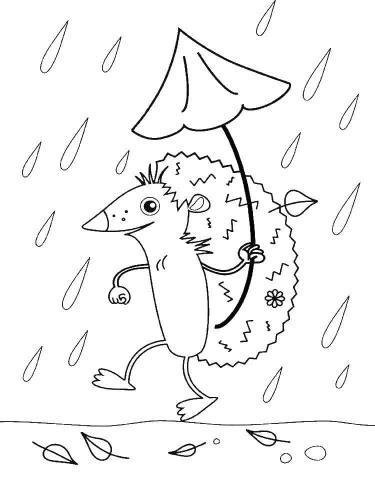 Riccio sotto la pioggia
