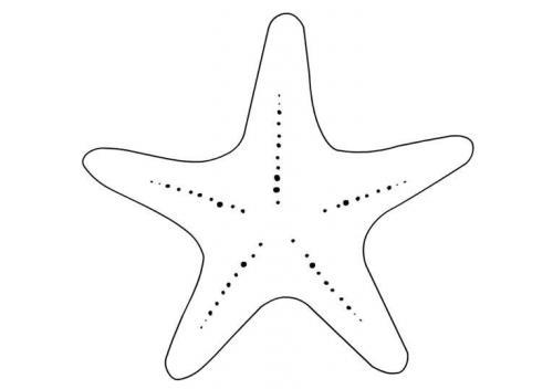 stella per bambini