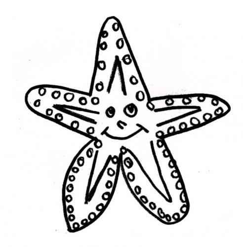 stelle marina