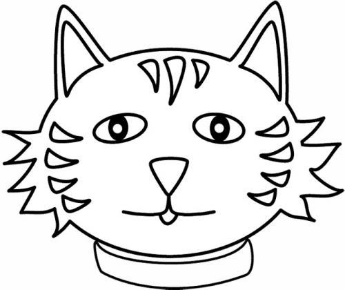 testa gatto