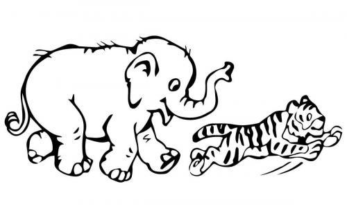 tigre da colorare per bambini