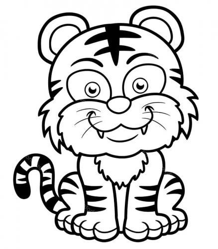 tigre disegni