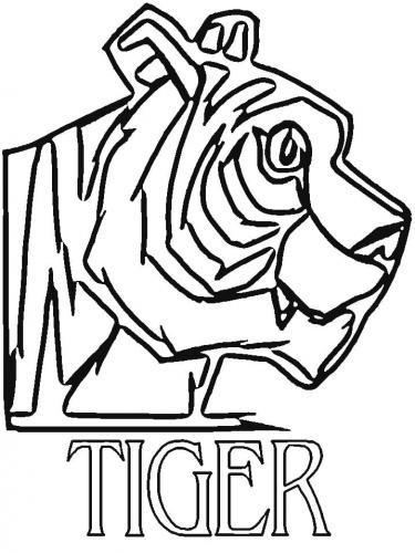 tigre disegni da copiare e stampare