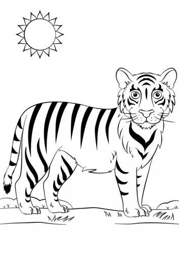 tigre disegno per bambini