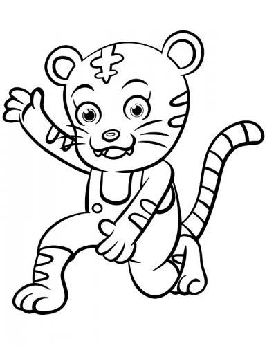 tigre immagini