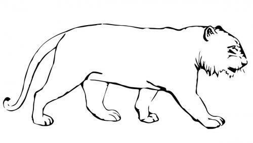 tigre stilizzata disegno