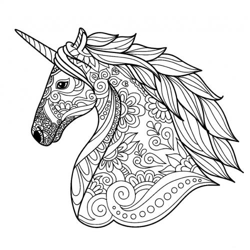 unicorni immagini