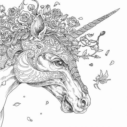 unicorno disegno